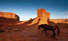 Het Paard van de Vallei van het monument Stock Fotografie