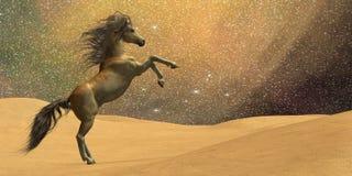 Het Paard van de wildernis stock illustratie