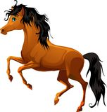Het paard van het beeldverhaal Stock Afbeeldingen