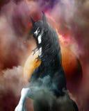 Het Paard van het fantasiegraafschap Stock Afbeeldingen