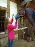 Het paard van het meisje behandelt Royalty-vrije Stock Afbeeldingen