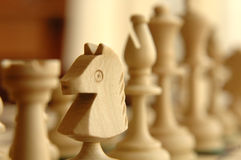 Het Paard van het schaak Royalty-vrije Stock Afbeelding