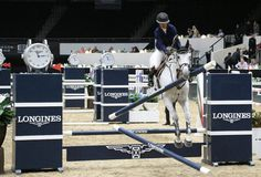 Het Paard van Longinesmeesters Royalty-vrije Stock Afbeelding
