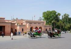 Het paard van Marrakech Stock Foto