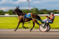 Het Paardenrennen van Ottawa royalty-vrije stock foto