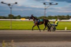 Het Paardenrennen van Ottawa royalty-vrije stock fotografie