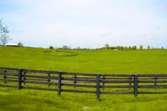 Het Paardlandbouwbedrijf van Kentucky Royalty-vrije Stock Fotografie