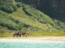 Het paardrit van de berg stock fotografie