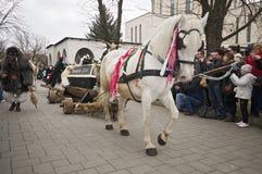 Het paardvoertuig van Buso met doodskist Stock Fotografie