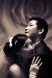 Het paarportret van het huwelijk stock foto