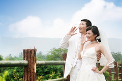 Het paarportret van het huwelijk Stock Fotografie