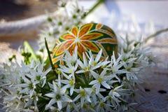 Het paasei ornated met kleine witte bloemen stock foto's