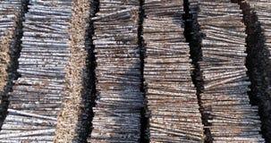 Het pakhuis van gesneden berken ligt in keurige rijen Houthakken