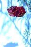 Het pakketornamenten van Kerstmis met schaduwen Stock Afbeeldingen