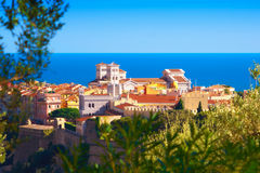 Het Paleis en de Kathedraal in Monaco Stock Fotografie