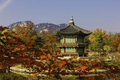Het Paleis van Autumnofgyeongbokgung in Seoel, Zuid-Korea stock foto's