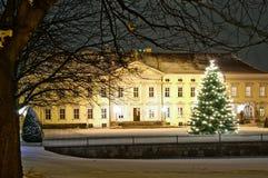 Het paleis van Bellevue in Berlijn Stock Afbeeldingen