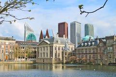 Het Paleis van Binnenhof - Nederlandse Parlament Royalty-vrije Stock Foto's