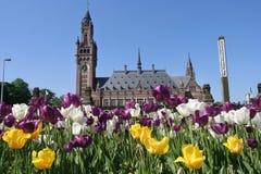 Het Paleis van de vrede in Den Haag royalty-vrije stock afbeeldingen