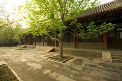 Het paleis van de Zomer, Peking, Chi Royalty-vrije Stock Foto's