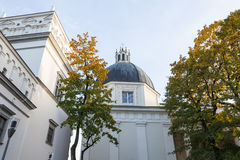 Het paleis van grote hertogen van Litouwen en kathedraal Royalty-vrije Stock Fotografie
