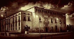 Het Paleis van Guadalajara Infantado Royalty-vrije Stock Fotografie