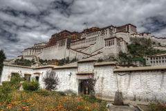 Het paleis van Potala, Lhasa Stock Foto's