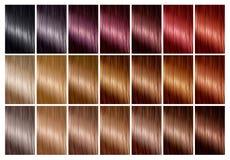 Het palet van de haarkleur met een waaier van monsters tinten Kleurengrafiek stock illustratie