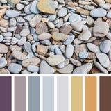 Het palet van de strandkiezelsteen stock foto