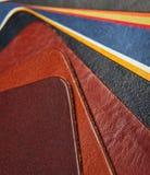 Het paletsteekproef van de kleur van leer. Stock Fotografie