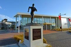 Het Palmerstonnoorden - het Rugbymuseum van Nieuw Zeeland Royalty-vrije Stock Afbeeldingen