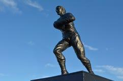 Het Palmerstonnoorden - het Rugbymuseum van Nieuw Zeeland Royalty-vrije Stock Afbeelding