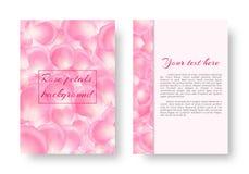 Het pamflet met het stijgen nam bloemblaadjes toe Stock Fotografie