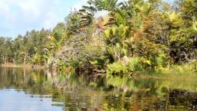 Het Pangalanes-kanaal, oostelijk Madagascar stock footage