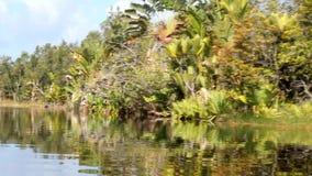 Het Pangalanes-kanaal, oostelijk Madagascar stock videobeelden