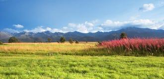 Het panorama van bergen Stock Afbeelding