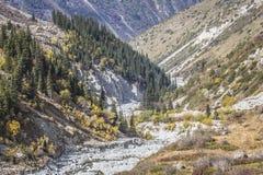 Het panorama van berglandschap van kloof ala-Archa in de som Royalty-vrije Stock Afbeelding