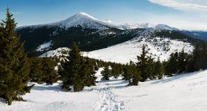 Het panorama van de berg stock afbeeldingen