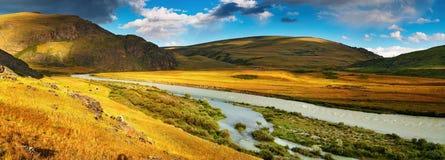 Het panorama van de berg, plateau Ukok Stock Foto