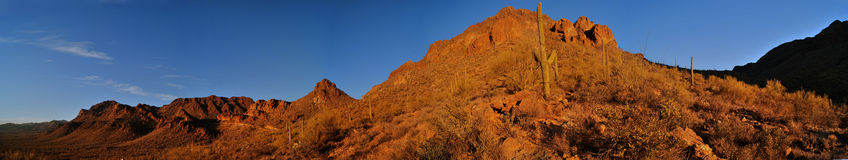 Het Panorama van de Berg van de woestijn stock afbeeldingen
