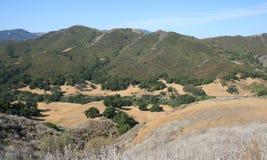 Het Panorama van de Canion van de vrijheid Stock Foto
