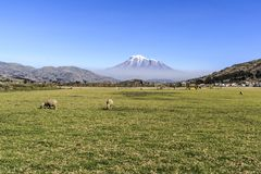 Het panorama van de Chimborazoberg in Ecuador stock foto