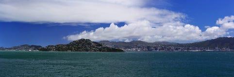 Het Panorama van de Haven van Wellington Stock Afbeelding