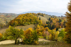 Het panorama van de herfst Royalty-vrije Stock Afbeeldingen