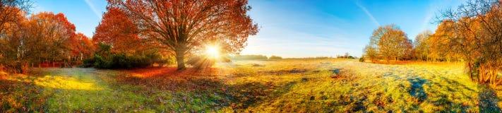 Het panorama van het de herfstlandschap stock afbeelding