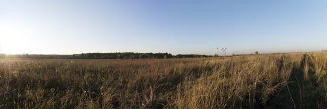 Het panorama van het de herfstlandschap Stock Foto's