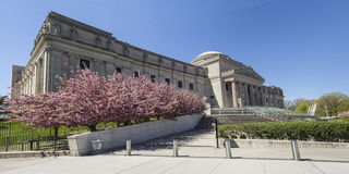 Het Panorama van de het Museumlente van Brooklyn Stock Afbeelding