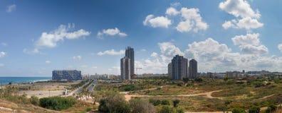 Het panorama van de knuppelyam stock foto's