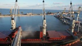 Het panorama van de korrelgewassen van de schiplading op bulkvrachtschip via boomstam aan open lading houdt bij siloterminal in z stock footage