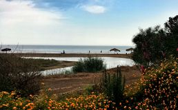 Het Panorama van de kust Adriatische kust Kroatië Royalty-vrije Stock Afbeeldingen